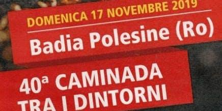 "Gruppo VI ""Caminada tra i dintorni"""