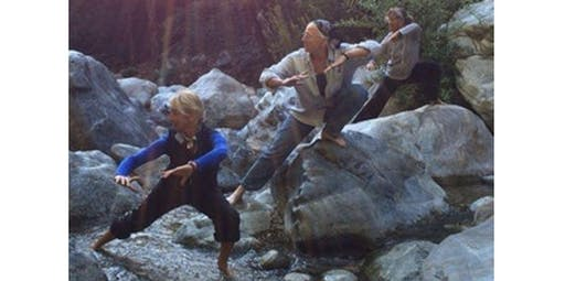 Tai Chi Balance (2019-12-12 starts at 8:00 PM)