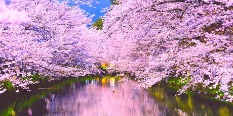Sakura Sound Meditation with Yoga and Koto @ Temple in Düsseldorf tickets