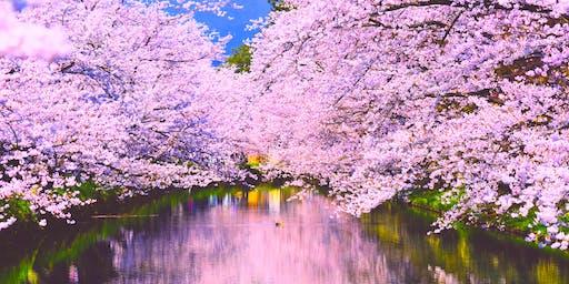 Sakura Sound Meditation with Yoga and Koto @ Temple in Düsseldorf