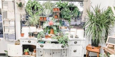 Design Your Own Succulent Terrarium!
