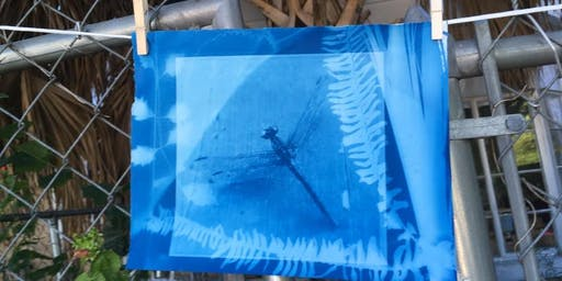"""Cyanotype """"Rays of Hope"""" Part 2 New Date: NOV. 17th 1-4"""