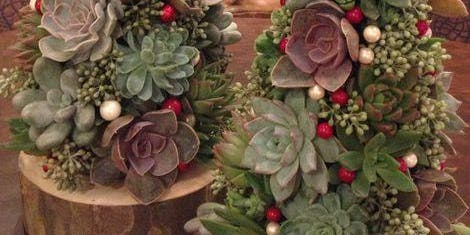 Succulent Christmas Tree Workshop with Paper Daisy
