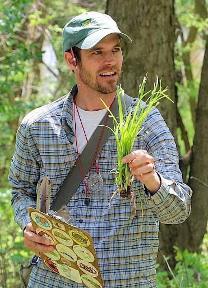Spring Gardening Inspiration 2020 image