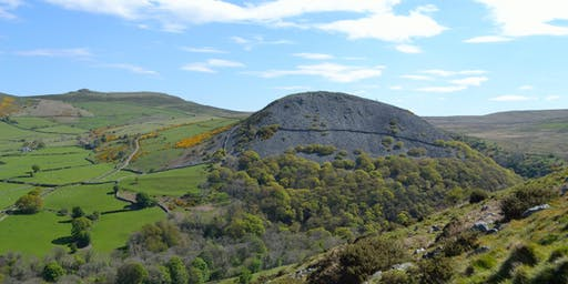 Guided Archaeology Walk to visit prehistoric settlement sites & hillfort