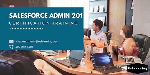 Salesforce Admin 201 Certification Training in Charlottesville, VA