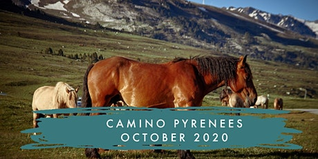 CAMINO TASTER | SPAIN | PYRENEES SECTION | OCTOBER 2020 billets