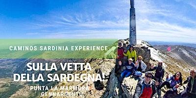 """Trekking verso la cima del Gennargentu in Sardegna: """"***** La Marmora""""."""