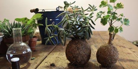 Doppelworkshop Pflanzenliebe -  Stecklinge ziehen und Kokedama Tickets