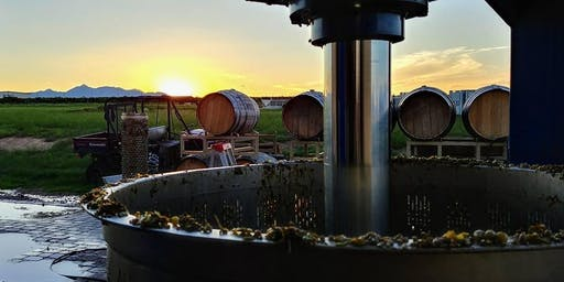 Whiskey and Wine in the Old West at Kief-Joshua Vineyards-Willcox