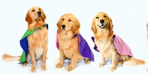 The Roverchase Foundation  Service Dog Graduation Gala