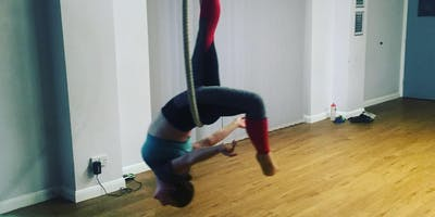Aerial Hoop Intermediates March 2020