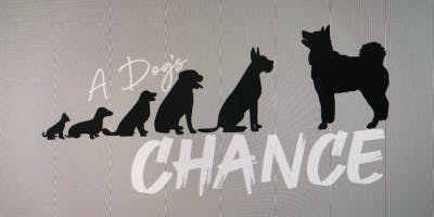 A Dog's Chance Complimentary Training Session