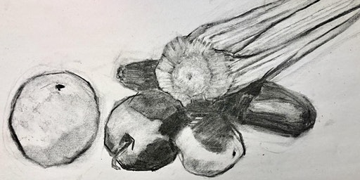 Basic Drawing 6-week Artist Series