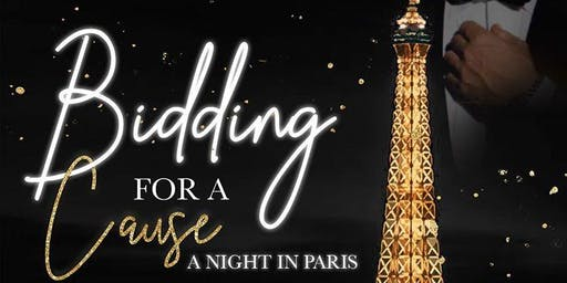 Bidding for a Cause: A Night in Paris
