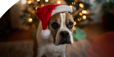 Stockland Baulkham Hills - Paws & Claus tickets