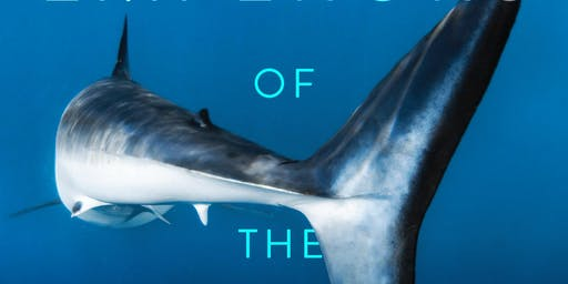 William McKeever Emperors of the Deep: Sharks--The Ocean's Most Mysterious
