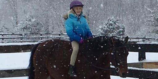 Hidden Hills Farm Christmas Horseplay