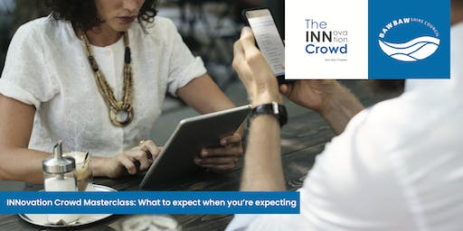INNovation Crowd Masterclass - What to expect when you're expecting!