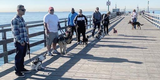 A Veteran's Objective Dog Training Program