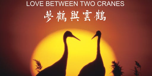 LOVE BETWEEN TWO CRANES - Photographic Exhibition