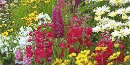 Summer Gardening Talk @ Grantville