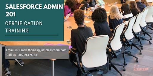 Salesforce Admin 201 Certification Training in Asbestos, PE