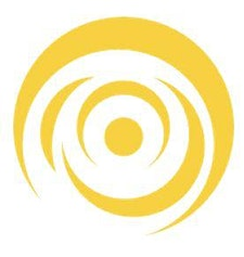 Customer Experience Institute logo