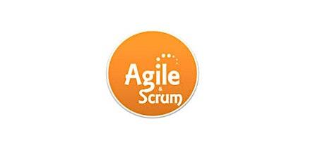 Agile & Scrum 1 Day Virtual Live Training in Hamilton tickets
