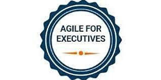 Agile For Executives 1 Day Training in Mississauga