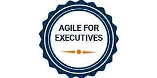 Agile For Executives 1 Day Virtual Live Training in Markham