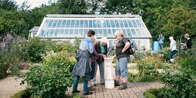 Guided Heritage Tour of St Ann's Allotments