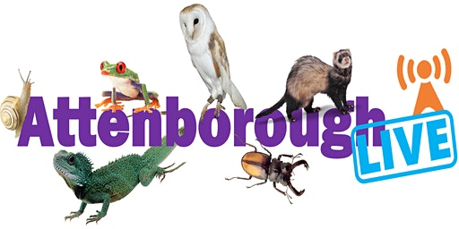 Attenborough Live!