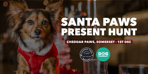 Santa Paws Present Hunt - Cheddar