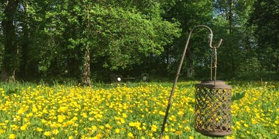 Spring into 2020, a Residential Yoga Weekend in Blackhill Woods Retreat