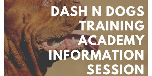 Dash N Dogs Training Academy Information Session