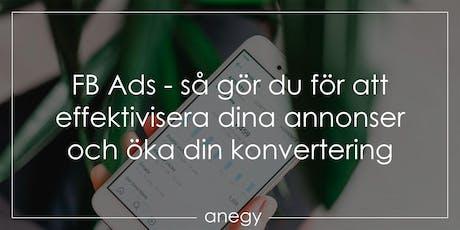 FB Ads - Så gör du för att effektivisera dina annonser och öka din konvertering biljetter