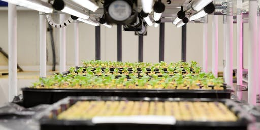 GrowAgri Vertical Farming Seminar