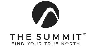 The Summit Huddle 2.0 - Find Your Professional Path in 90 Days