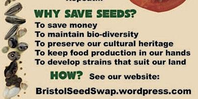 Bristol Seed Swap 2020