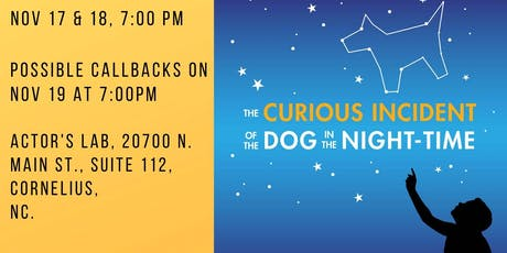 Auditions for The Curious Incident of the Dog in the Night-time tickets