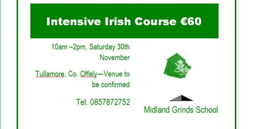 Intensive Leaving Cert Irish Revision- One Day Course