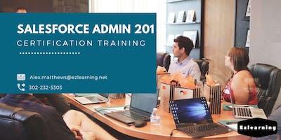 Salesforce Admin 201 Certification Training in Churchill, MB