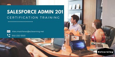 Salesforce Admin 201 Certification Training in Dawson Creek, BC