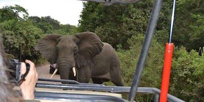 African Safari in Tanzania