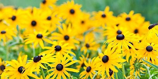 Butterfly Gardening - Master Gardener Series