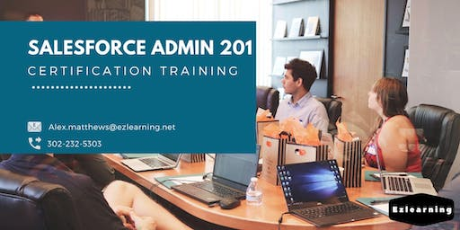 Salesforce Admin 201 Certification Training in Red Deer, AB