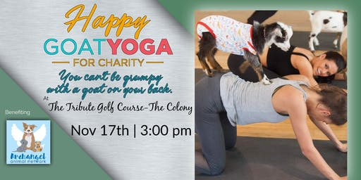 Happy Goat Yoga at Tribute Golf Course: Benefiting Archangel Animal Net