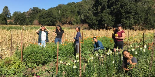 Youth Outside's Outdoor Educators Institute 2019 South Bay Graduation
