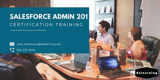 Salesforce Admin 201 Certification Training in Sainte-Anne-de-Beaupré, PE